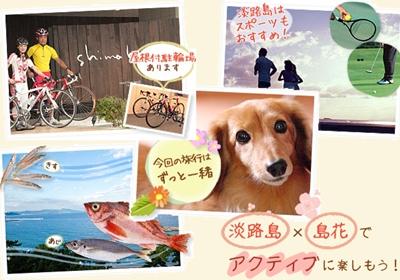 淡路島×島花 4つの楽しみ方